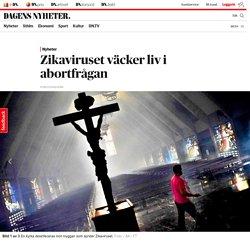 Zikaviruset väcker liv i abortfrågan