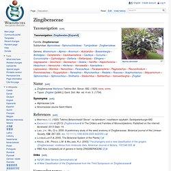 Zingiberaceae
