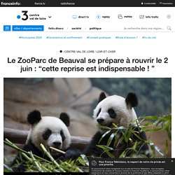 """FRANCE 3 25/05/20 Le ZooParc de Beauval se prépare à rouvrir le 2 juin : """"cette reprise est indispensable ! """""""