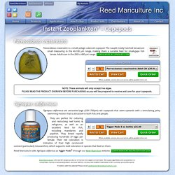 Instant Zooplankton® Products
