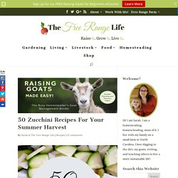 50 Zucchini Recipes For Your Summer Harvest - The Free Range Life