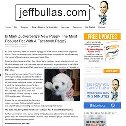 Is Mark Zuckerberg's New Puppy The Most Popular Pet With A Facebook Page?