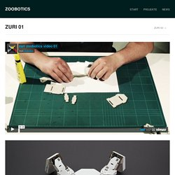ZURI 01 | ZOOBOTICS