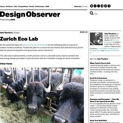 Zurich Eco Lab: Design Observer