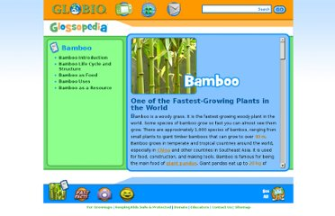 http://www.globio.org/glossopedia/article.aspx?art_id=12&art_nm=Bamboo
