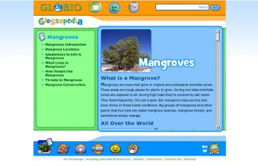 http://www.globio.org/glossopedia/article.aspx?art_id=39&art_nm=Mangroves
