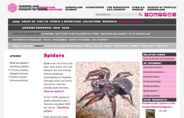 http://www.qm.qld.gov.au/features/spiders