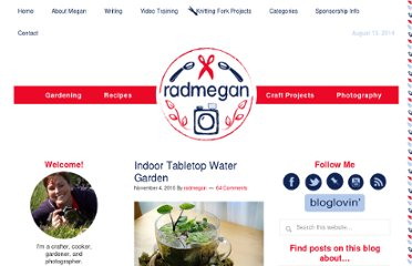 http://radmegan.blogspot.com/2010/11/indoor-tabletop-water-garden.html