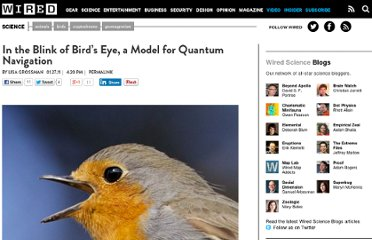 http://www.wired.com/wiredscience/2011/01/quantum-birds/