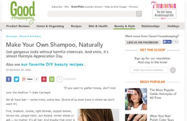 http://www.thedailygreen.com/green-homes/blogs/nontoxic/natural-shampoo-recipe-460409