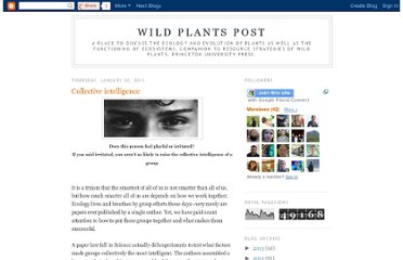 http://wildplantspost.blogspot.com/2011/01/collective-intelligence.html