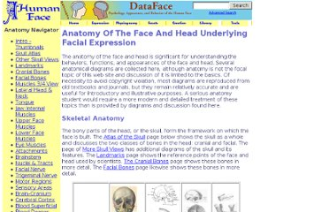 http://face-and-emotion.com/dataface/anatomy/anatomy.jsp