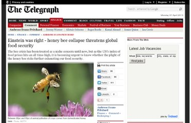 http://www.telegraph.co.uk/finance/comment/ambroseevans_pritchard/8306970/Einstein-was-right-honey-bee-collapse-threatens-global-food-security.html