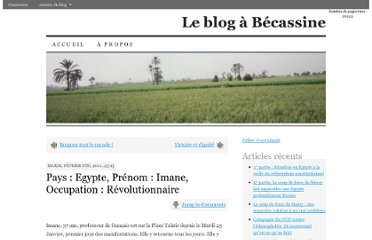 http://becassine.owni.fr/2011/02/pays-egypte-prenom-imane-occupation-revolutionnaire/
