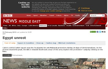 http://www.bbc.co.uk/news/world-12434787