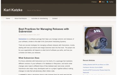 http://www.karlkatzke.com/best-practices-for-managing-releases-with-subversion/