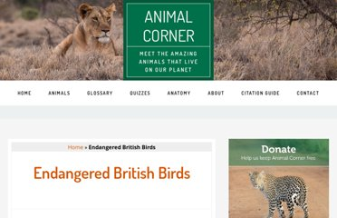 http://www.animalcorner.co.uk/endangered/bi_birds.html