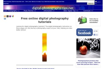 http://www.digital-photography-tips.net/digital-photography-tutor.html
