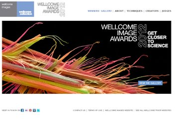 http://www.wellcomeimageawards.org/index.htm#