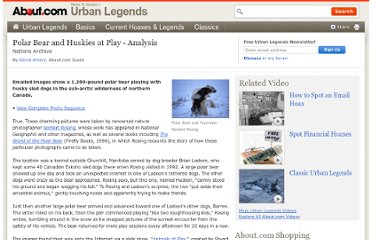 http://urbanlegends.about.com/od/animalkingdom/a/polar_bear.htm