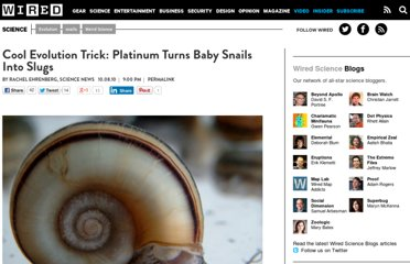 http://www.wired.com/wiredscience/2010/10/snails-slugs-shell-evolution/