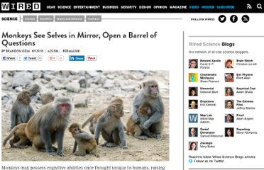 http://www.wired.com/wiredscience/2010/09/monkey-self-awareness/