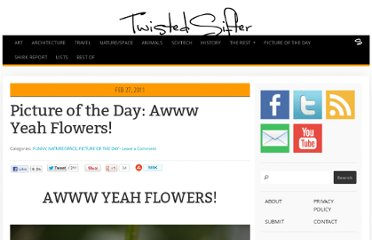 http://twistedsifter.com/2011/02/picture-of-the-day-awww-yeah-flowers/