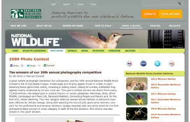 http://www.nwf.org/News-and-Magazines/National-Wildlife/~/link.aspx?_id=3248AEF1EC3248CF9ADEC6FB75B72CF2&_z=z