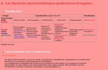 http://membres.multimania.fr/neb5000/BacteriologieI/Groupes%20Bacteriens/Bacteries%20photosynthetiques%20productrices%20d%20oxygene.htm