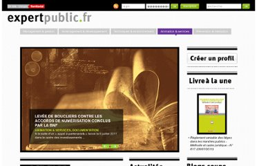 http://www.expertpublic.fr/categorie/animation-services/documentation/