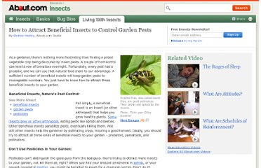 http://insects.about.com/od/insectpests/p/attbeneficials.htm