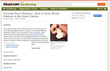 http://gardening.about.com/od/vegetables/p/Sweet-Potatoes.htm