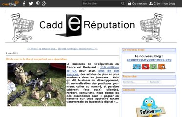 http://caddereputation.over-blog.com/article-kit-de-survie-du-bon-consultant-en-e-reputation-68872634.html