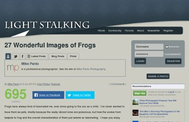 http://www.lightstalking.com/images-of-frogs