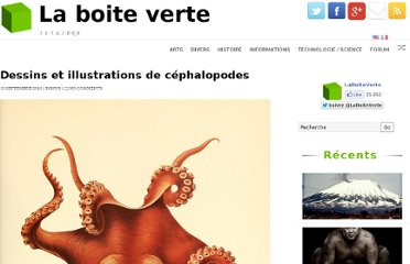 http://www.laboiteverte.fr/dessins-et-illustrations-de-cephalopodes/
