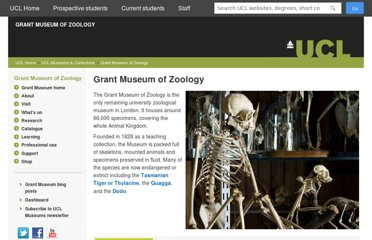 http://www.ucl.ac.uk/museums/zoology