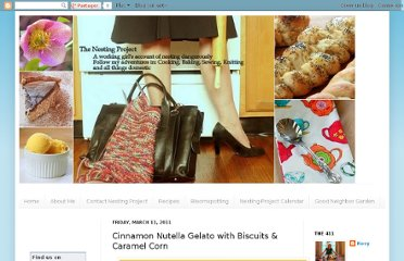http://www.nesting-project.com/2011/03/cinnamon-nutella-gelato-with-biscuits.html