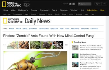 http://news.nationalgeographic.com/news/2011/03/pictures/110303-zombie-ants-fungus-new-species-fungi-bugs-science-brazil/