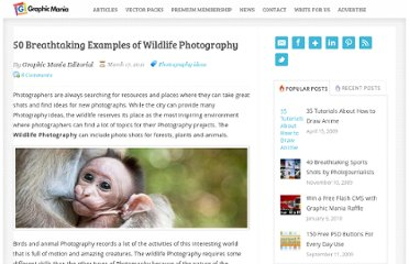 http://www.graphicmania.net/50-breathtaking-examples-of-wildlife-photography/