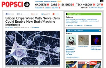 http://www.popsci.com/science/article/2011-03/silicon-chips-wired-nerve-cells-could-enable-new-brain-machine-interfaces