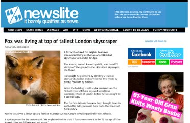 http://newslite.tv/2011/02/25/fox-was-living-at-top-of-talle.html