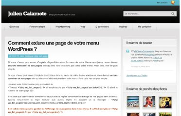 http://www.julien-calamote.com/comment-exlure-une-page-de-votre-menu-wordpress