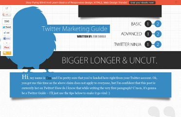 http://www.1stwebdesigner.com/design/twitter-marketing-guide/