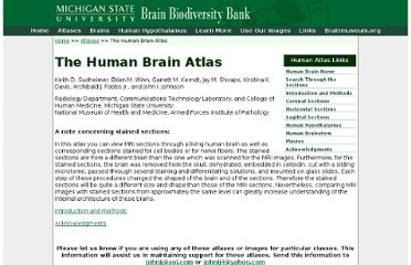 https://www.msu.edu/~brains/brains/human/index.html