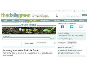 http://www.thedailygreen.com/green-homes/blogs/organic-gardening/growing-garlic-460709