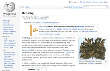 http://en.wikipedia.org/wiki/Rat_king_(folklore)