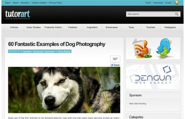 http://www.tutorart.com/index.php/60-examples-of-fantastic-dog-photographs/