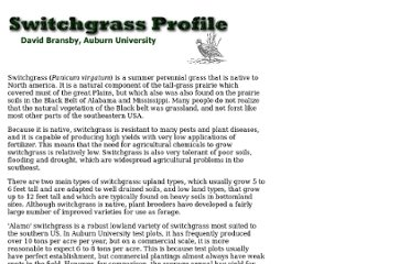 http://bioenergy.ornl.gov/papers/misc/switchgrass-profile.html