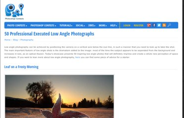 http://www.pxleyes.com/blog/2011/04/50-professionaly-executed-low-angle-photographs/