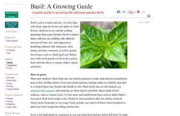 http://www.organicgardening.com/learn-and-grow/basil-growing-guide